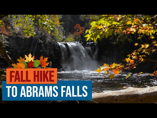 Fall Hike to Abrams Falls in Cades Cove, Great Smoky Mountains National Park