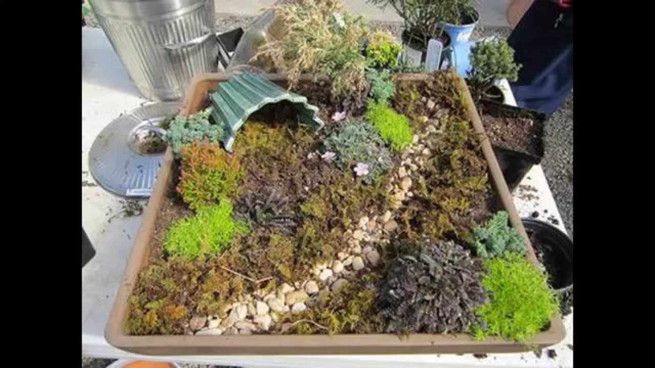 Creative Dish garden decorating ideas YouTube