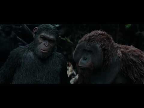 Планета обезьян: Война - НАЕБАЛОВО зрителей на 10 из 10 (Обзор)