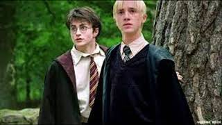 Draco Malfoy and Why in Merlin's Name is it ALWAYS Harry, Chapter Twelve