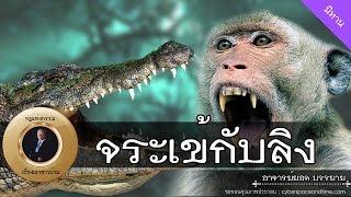 อาจารย์ยอด : จระเข้กับลิง [นิทาน] new