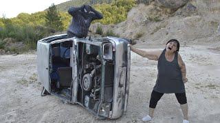Bosanska seljančica i Renault