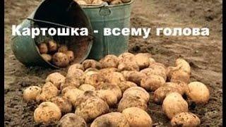 Сажаем картошку всей семьёй. Лебедка сельхоз ЛС-100(Май 2016. Вышли сажать картошку дружно всей семьёй. Проходим, закладываем навоз, посыпаем золой. Мы сажаем,..., 2016-05-15T05:17:22.000Z)