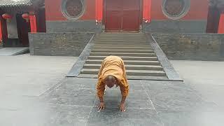Shaolin Ba Duan Jin- 8 Section Brocade Qigong