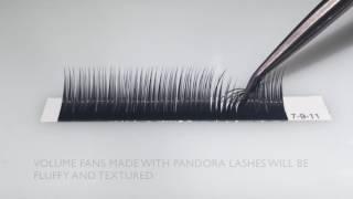 The Lash Shop - Pandora Lashes