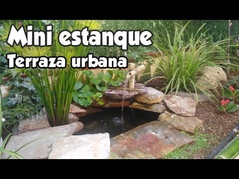 Peque o estanque en terraza urbana el estanque de mi for Como hacer un pequeno estanque en el jardin