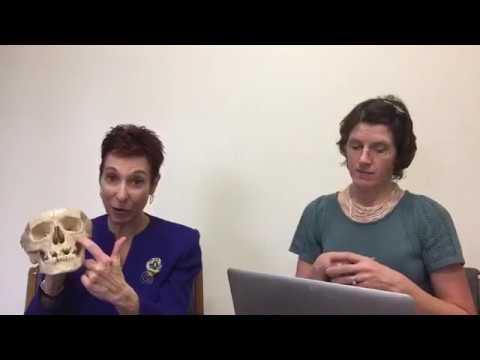 Facebook Live: Cluster Headaches with Dr. Deborah Friedman