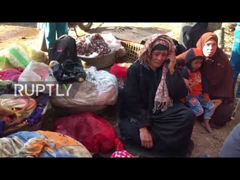 Egypt: At least 15 killed in train collision in Beheira province