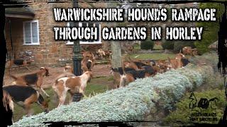 Warwickshire Hounds rampage through gardens in Horley