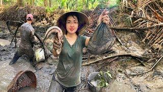 Vật Lộn với bầy Cá Lóc - Tát ao bắt Cá kiểu này mới sướng | MTTL Tập 216