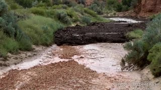 Large Flash Flood / Debris Flow Buckskin Wash / Gulch 2013