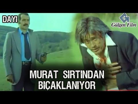 Dayı  - Murat'a Büyük Kumpas!