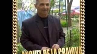ANGHEL DE LA CRAIOVA ,IONICA MINUNE - Frunzulita flori de mai,in urma cu peste 25 ani
