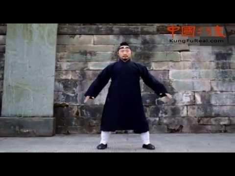 wudang kung fu direct ---wu dang ying yang ba gua zhang baguazhang forms