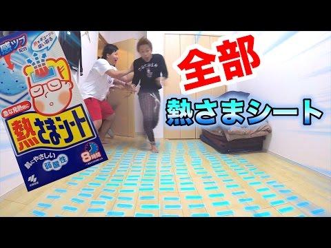 【ドッキリ】熱さまシート200枚を床に敷いてシルクをぶっ倒せ!!