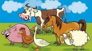 Les Animaux de la ferme en folie !