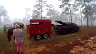 Free Boondocking In The Desoto National Forest