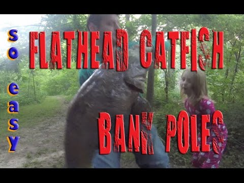 How to catch FLATHEAD CATFISH with BANK POLES on the river on foot (no boat)