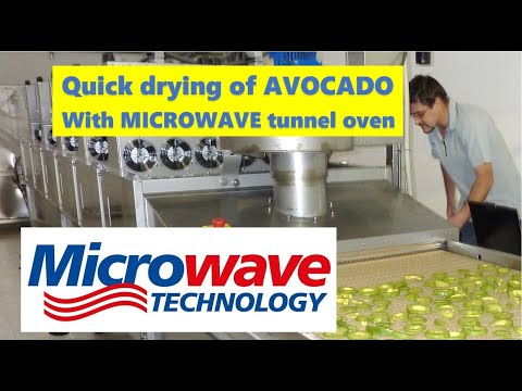 Drying Avocado With Industrial Microwave Tunnel Oven Youtube