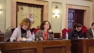Pleno enero 2017 - Micol responde a Roque Ortiz sobre AVE y Camino de Tiñosa