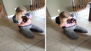 Parents Surprise Daughter With Puppy For Graduation