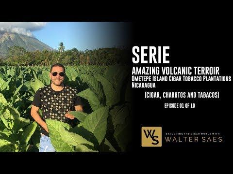 Part 1/10: Amazing Volcanic Terroir - Ometepe Island Cigar Tobacco Plantations - Nicaragua