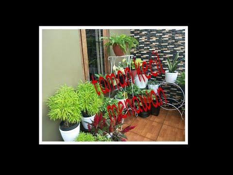 desain-taman-depan-rumah-minimalis-dengan-tanaman-hias-murah-tapi-tetap-menawan