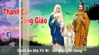 Dưới Áo Mẹ Từ Bi - Lm Nguyễn Sang.mp4