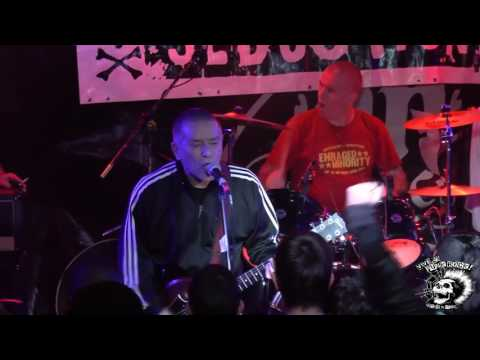 The Oppressed - Live at Vive Le Punk Rock Festival