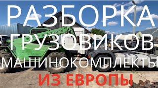Отправки по Россию Разборка Европейских грузовиков Iveco Man Scania Renault Volvo Daf Mercedes