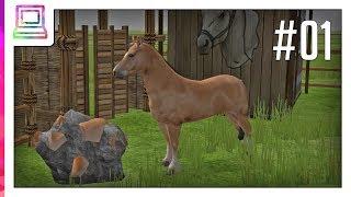 Wildlife Park 2 - Horses (part 1) (Horse Game)