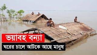ভয়াবহ বন্যা | ঘরের চালে আটকে আছে মানুষ | Floods in BD | Somoy TV