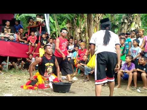 Singo Manunggal mudho lawak.live balung jember