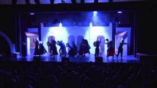 Musical Fever Luzern - NDK Showreel 2013