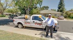 Dynamite Exterminators | Modesto, CA | Pest Control Services