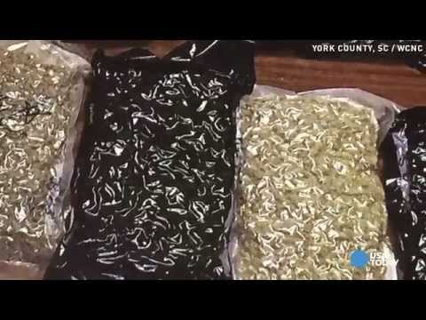 Crime trend: Criminals ship drugs to unsuspecting homes