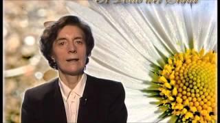 Il Santo del giorno - 5 Aprile : S. Vincenzo Ferrer