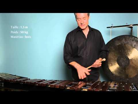 [Figures de Notes] Les percussions, mode d'emploi