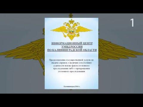 Как получить справку об отсутствии судимости в Калининградской области