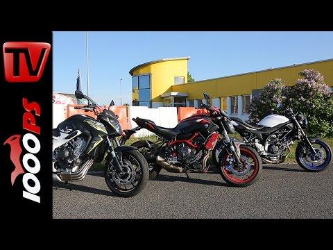 Vergleich Suzuki SV650, Yamaha MT 07, Honda CB650F | Einsteiger Nakedbikes 2016 Foto