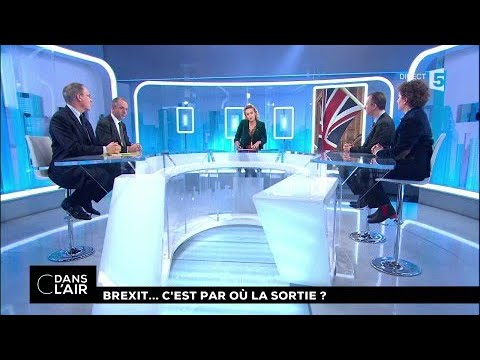 Brexit... C'est par où la sortie ? #cdanslair 05.12.2017