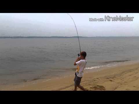 Fishing at sembawang park (zhuo ming)