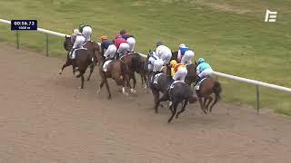 Vidéo de la course PMU PRIX DU PETIT LABYRINTHE
