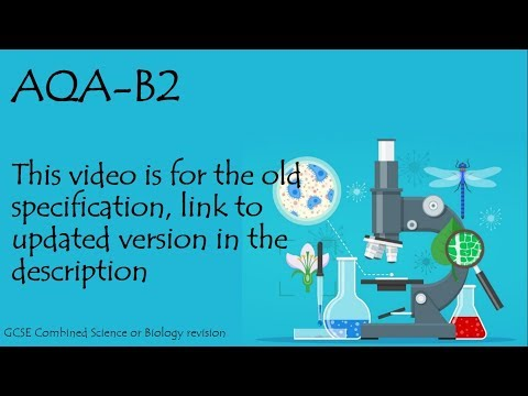 The whole of AQA B3, in only 37 minutes!! GCSE biology or further additional science revision.