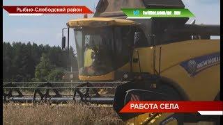 Рустам Минниханов побывал в трёх районах республики и оценил ход уборочной кампании - ТНВ