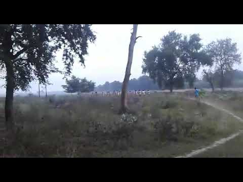 New army railly taiyari nawada
