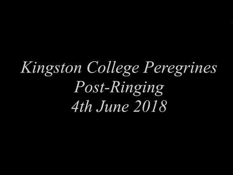 Kingston College Peregrines Post Ringing 04-06-18