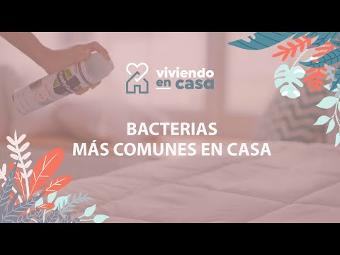¿Cuáles son las bacterias más comunes en el hogar y cómo eliminarlas?