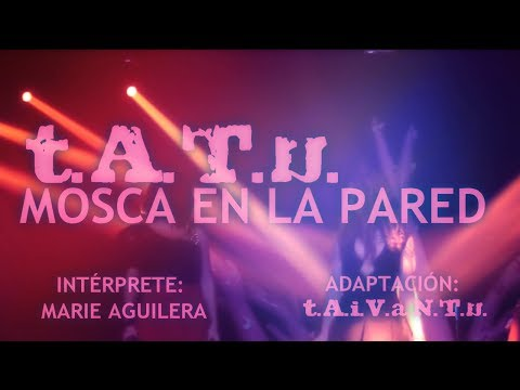 T.A.T.u. | Fly On The Wall | Spanish Cover | Mosca En La Pared