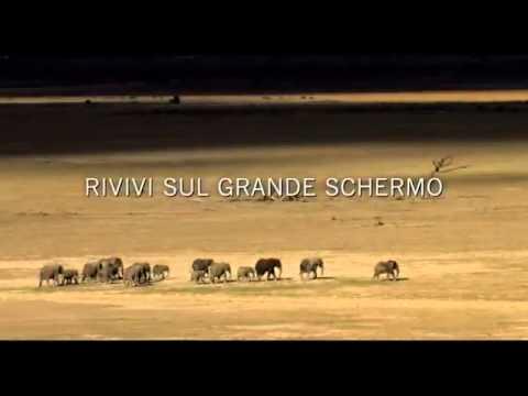 ONE LIFE - IL FILM trailer ufficiale italiano